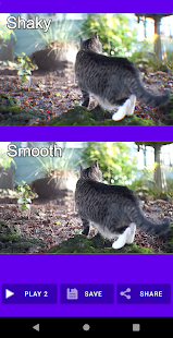 Shaky Video Stabilizer