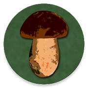 Book of Mushrooms  Icon