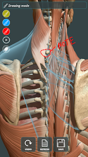 Visual Anatomy 3D | Human 1.2 Screenshots 3