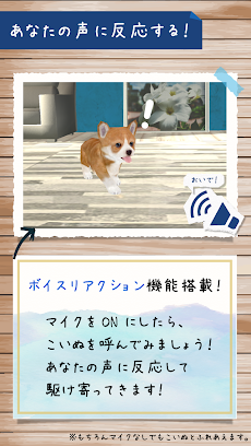犬の癒し育成ゲーム3D 無料でペット育成のおすすめ画像3
