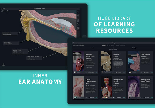 Complete Anatomy u201821 - 3D Human Body Atlas 6.4.0 Screenshots 24