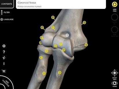 Skeleton | 3D Anatomy 2.5.3 Screenshots 15