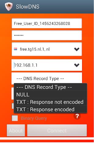 VPN Over DNS  Tunnel : SlowDNS 2.6.3 Screenshots 4
