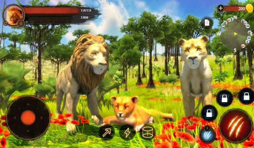 The Lion  Pc-softi 15