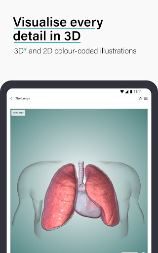 Teach Me Anatomy: 3D Human Body & Clinical Quizzes  Screenshots 22