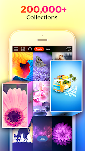 Kappboom – Cool Wallpapers & Background Wallpapers 1