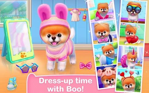 Boo – The World's Cutest Dog 1