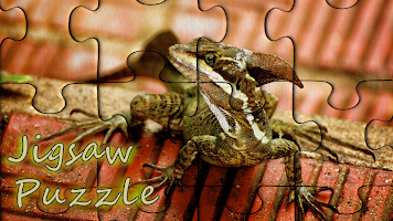 Pzls - free classic jigsaw puzzles for adults