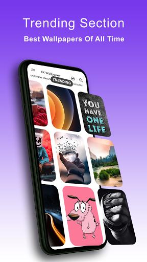 4K Wallpapers - HD, Live Backgrounds, Auto Changer 7.0 Screenshots 4