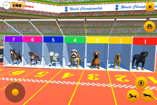 Dog Race Sim 2019: Dog Racing Games  screenshots 5