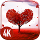 Love on the screen APK