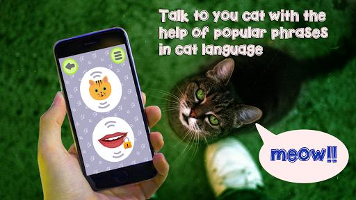 Cat Language Translator Simulator - Talk to Pet apktreat screenshots 2