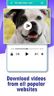 VideoSaver - Video downloader