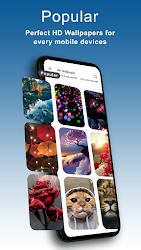 4K Wallpapers - HD, Live Backgrounds, Auto Changer .APK Preview 1