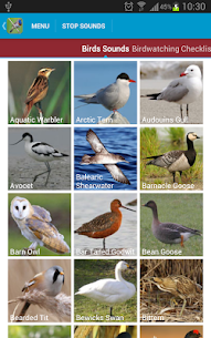 UK Birds Sounds Free For Pc – Free Download For Windows 7, 8, 10 Or Mac Os X 2