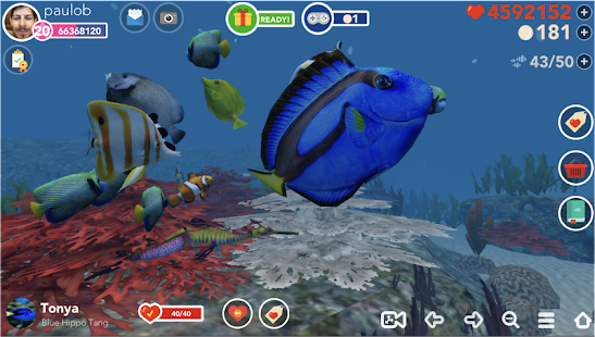 Ocean Reef Life - 3D Virtual Aquarium Screenshot