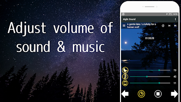 Nature Sounds of the night for comfortable sleep