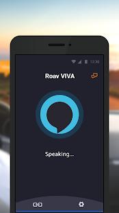 Roav VIVA