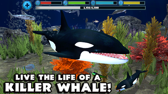 Orca Simulator  Apps For Pc – [windows 10/8/7 And Mac] – Free Download In 2020 1