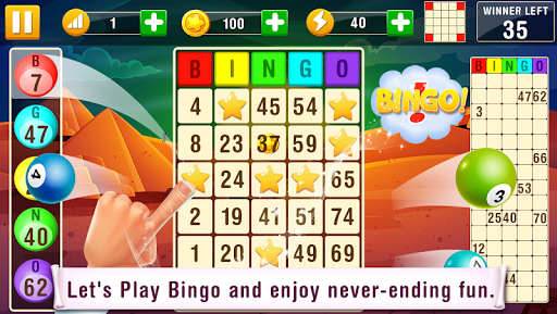Bingo  screenshots 1