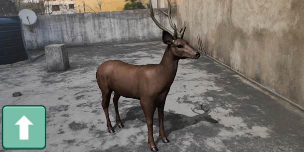 AR Real Animals  For Pc (Download On Computer & Laptop) 1