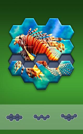Hexa Jigsaw Puzzle u00ae 44.01 screenshots 12