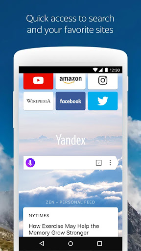 Yandex Browser (beta) 20.12.3.117 screenshots 1
