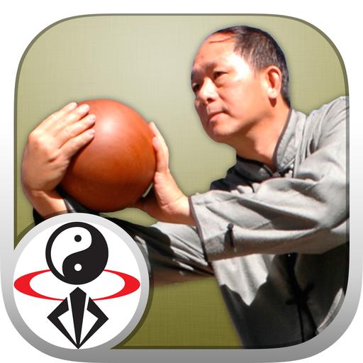 Tai Chi Ball Qigong (Dr. Yang) icon