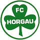 FC Horgau APK