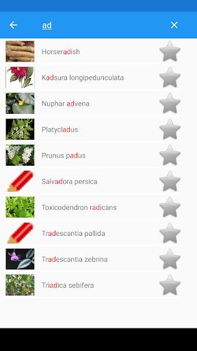 Medicinal Plants & Herbs: Encyclopedia 1.0.17 Screenshots 2