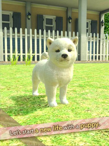 with My DOG  screenshots 9