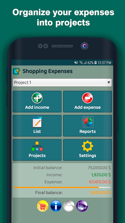 Shopping Expenses  poster 0