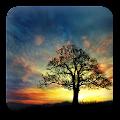 Sunset Hill Free LiveWallpaper APK