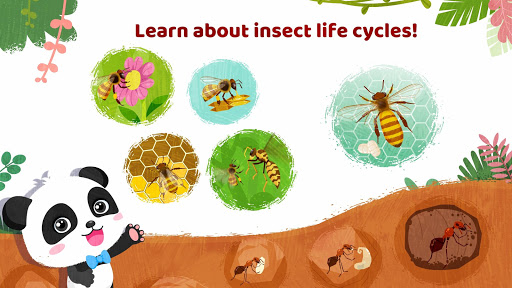 Little Panda's Insect World - Bee & Ant  screenshots 4