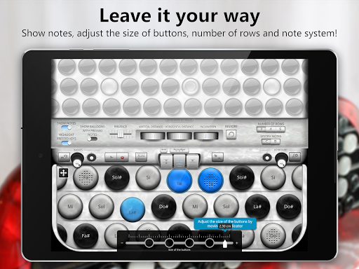 Accordion Chromatic Button 2.3 screenshots 11