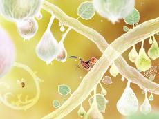 Botanicula (ボタニキュラ)のおすすめ画像3