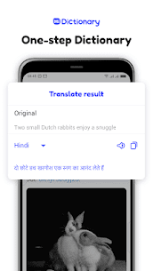 Hi Dictionary Mod Apk- Free Language Dictionary 1.6.0.4 (No Ads) 6