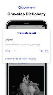 Hi Dictionary-Free Language Translation Dictionary Screenshot