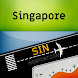 Singapore Changi (SIN) Info + Flight Tracker