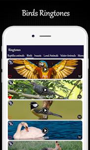 Animals and Birds Ring Tones 4
