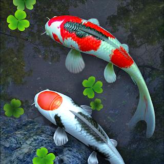 Hồ Cá 3D Hình Nền Động v1.76 [Đã mở khóa]