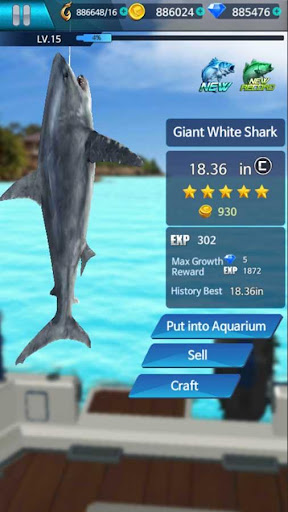 Fishing Championship 1.2.8 Screenshots 4