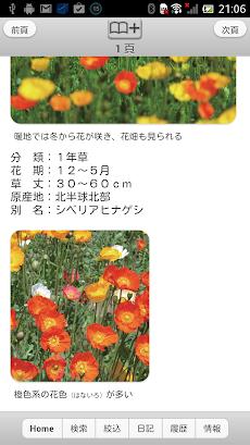 散歩で見かける四季の花のおすすめ画像5