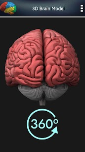 3D Human Brain + For Pc (Free Download – Windows 10/8/7 And Mac) 5