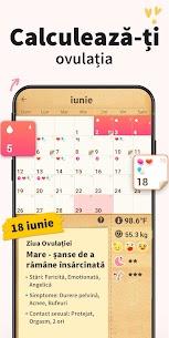 Calendarul Menstruatiei 3
