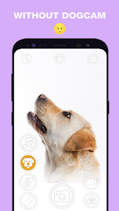 DogCam – Dog Selfie Filters and Camera 5