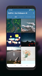 Best Wallpapers 4K  For Pc (Windows And Mac) Free Download 2