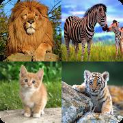 تعلم اسماء الحيوانات