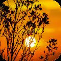 Sunset Wallpapers APK