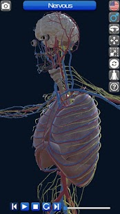 Anatomy 3D Screenshot